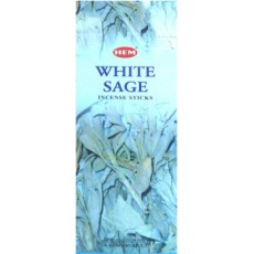 Sauge blanche